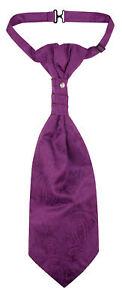 Vesuvio Napoli PreTied ASCOT Solid PAISLEY Color Cravat Men's Neck Tie 21 Colors
