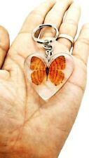 Butterfly in Clear Resin Real Brown Shape KeyRing insect Specimen Educatio Gift