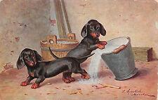Künstlerpostkarte spielende Dackel mit Eimer
