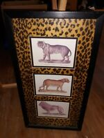 Framed Big Cats Picture