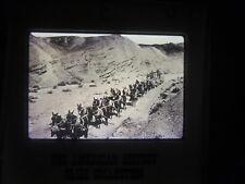 COMM Slide Photo 20 team mule hauling borax desert Wagon Mojave California