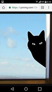 ****cat in window decal****