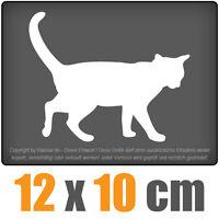 Katze 12 x 10 cm JDM Decal Sticker Auto Car Weiß Scheibenaufkleber