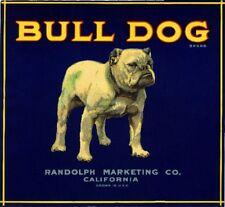 Los Angeles California English Bulldog Dog Orange Citrus Fruit Crate Label Print
