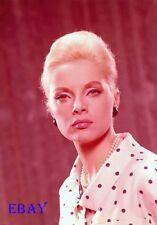 Virna Lisi Vintage  5  X  7  TRANSPARENCY