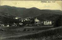 Sülzhayn Südharz Thüringen alte s/w AK ~1910 Gesamtansicht Panorama ungelaufen