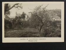 2320.-MALLORCA.-Cartuja de Valldemossa - Frutales en flor