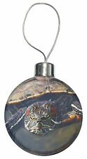 Terrapin Intrigued by Camera Christmas Tree Bauble Decoration Gift, AR-T1CB