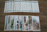 Players - Game Birds And Wild Fowl 1927 - VGC! Pick The Cards You Need!