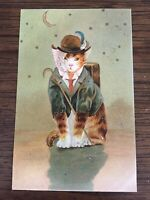Vintage Fantasy Cat Postcard Series 109 Crescent Moon Stars Printed In Germany