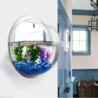 New Aquarium Tank Beta Decor Hanger Plant Acrylic Wall Mount Hanging Fish Bowl
