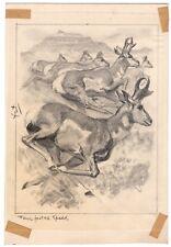 REINHOLD H. PALENSKE Original Drawing Wildlife Scene Deer FOUR FOOTED SPEED