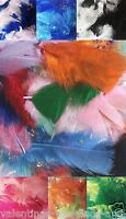 Mixed Small Soft Craft Feathers 50 Pack - Arts Card Cake Wedding Balloons Kids