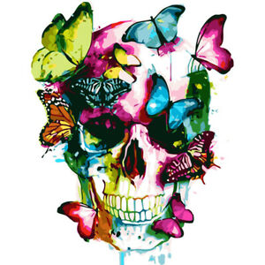 Painting By Numbers Kit DIY Skull Butterfly Canvas Oil Art Picture Craft