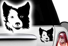 1x Aufkleber 12x10 cm Border Collie Französische Bulldogge Name Hund Bullterrier
