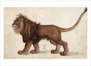 Durer - The Lion 1521 - fine art giclee print poster wall art - various sizes