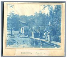 France, Corrèze, Cueille  vintage print cyanotype  8x10  Circa 1880