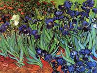 VINCENT VAN GOGH IRISES OLD MASTER ART PAINTING PRINT POSTER REPRODUCTION 2832OM