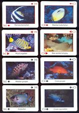 Playing Cards 2014 The Wonder fo the Red Sea