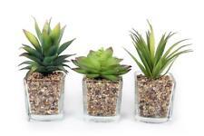 Set 3 Mini Artificial Small Succulent Cactus Cacti Plants Glass Pot Stones