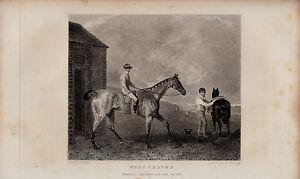 "original 1830 engraving titled "" miss craven  "" jockey &  stables"
