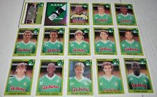 AS SAINT-ETIENNE ASSE VERTS CHAUDRON COMPLETE PANINI FOOTBALL FOOT 94 1993-1994