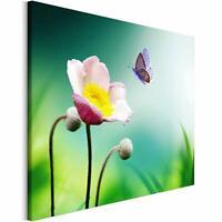 Bilder Leinwandbild Wandbilder Kunstdruck Design Leinwandbild Schmetterling Blum
