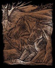 Kratzbild Kratzbilder Pferd Pferdetrio im Wind Kupfer Größe 20 cm x 25 cm