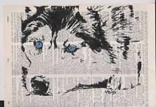 """Siberian Husky Alaskan Malmute Dog Dictionary Art Page 8x10 """"Sled Dog"""""""