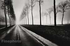1971 JEANLOUP SIEFF Vintage BELGIAN Country Road Tree Landscape Photo Art 8x10