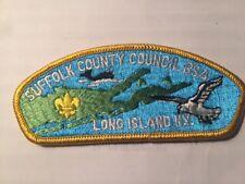 MINT CSP Suffolk County Council S-1b