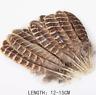 Bulk 20pcs Natural Pheasant Feathers 12-15cm DIY Craft Millinery Smudge Fan