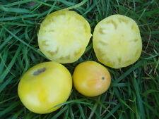 graines de tomate fantôme du Laos vendu en sachet de 30 graines