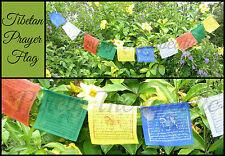 FLAGS STRING OF 10 TIBETAN PRAYER BUDDHIST Buddha 1.5 Metres Long Prosperity