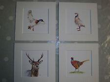 "Watercolour Stag, Pheasant, Duck, Partridge,  Prints  x 4, in  8""x 8"" mounts"