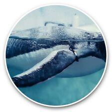 2 x Vinyl Stickers 30cm - Gentoo Penguin Swimming Underwater View  #45142