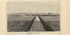 Stampa antica CERIGNOLA Veduta Panoramica Foggia Puglia 1891 Old antique print