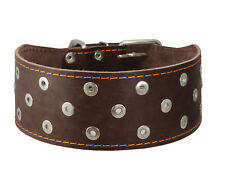 "Genuine Leather Dog Collar 3"" wide 19""-22.5"" neck Studs Brown Mastiff Doberman"