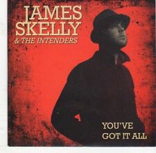 (EJ569) James Skelly & The Intenders, You've Got It All - 2013 DJ CD