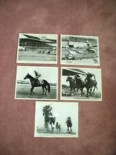 LOT OF (5) GARDEN STATE PARK RACETRACK PHOTOS HORSES / PADDOCK / TRACK