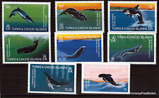 TURKS CAICOS TIMBRES NEUFS WHALE  BALEINES serie complete Scott 564/71  97M15