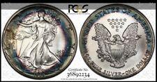 1989 PCGS MS-69 American Silver Eagle - Stunning Original Bullseye Rainbow Tone