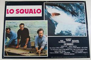 fotobusta film JAWS - LO SQUALO Steven Spielberg Roy Scheider Richard Dreyfuss b
