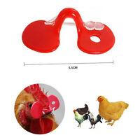 10pcs yeux de poulet créatifs lunettes éviter poule picorer les uns les autreLTA