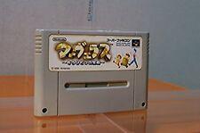 Super Famicom Marvelous Treasure Island Japan SFC SNES