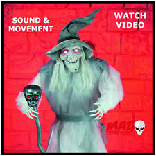 LIFE SIZE Animated Wicked Witch - Halloween Horror Decoration Prop MOVES + SOUND