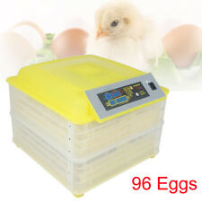 New listing 96 Digital Clear Egg Incubator Hatcher Automatic Egg Turning Temperature Control