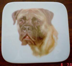 Lovely Mastiff Ceramic Coaster