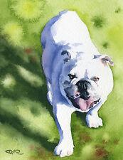 BULLDOG Watercolor 8 x 10 ART Print On W/C Paper Signed by Artist DJR
