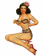 Rockabilly Bra & Panties Pinup Girl Waterslide Decal for Guitars & More S707